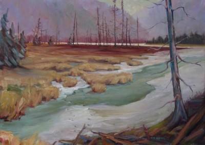Wetland Crossing