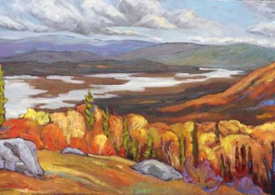 Lucille's View | 15 x 30 | $750 unframed