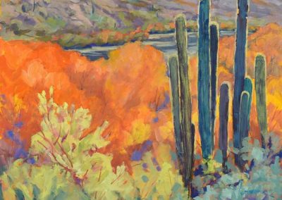 Saguaro Family | 20 x 24 | $800