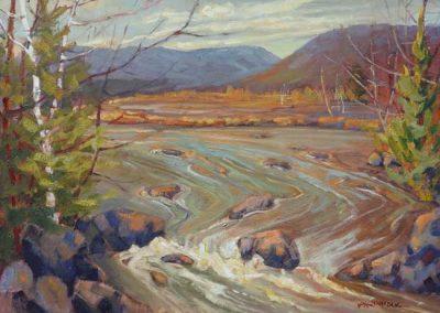 Golden Afternoon, Paugh Lake Area | 20 x 24 | $950/875 framed/unframed