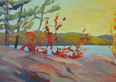 Algonquin Afternoon on Grand Lake | 12 x 24 | $560 framed