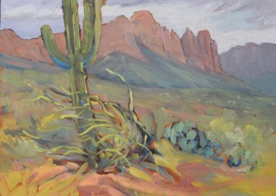 On the Peralta Trail, AZ | 9 x 12 | $400 unframed
