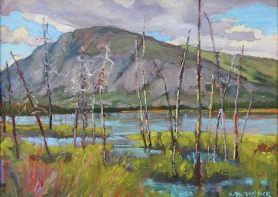 Stormy Weather, Pine Lake, near Haines Junction | 9 x 12 | sold