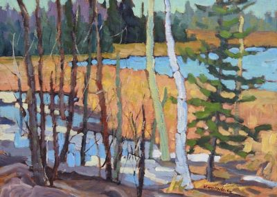 Mountain Marshland   9 x 12   $450 framed