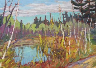 Spring on Al's Pond | 12 x 24 | $500 unframed