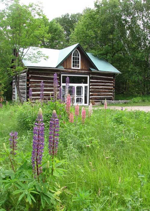 Kathy's Woodland Studio